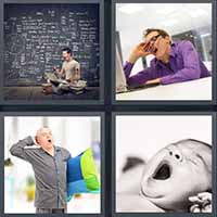 4 Pics 1 Word level 2392