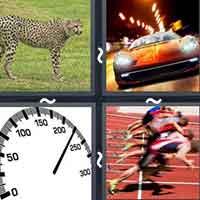 4 Pics 1 Word level 2512