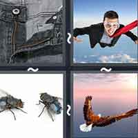 4 Pics 1 Word level 13-6 3 Letters