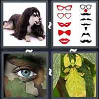 4 Pics 1 Word level 24-2 8 Letters