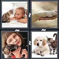 4 Pics 1 Word level 3116
