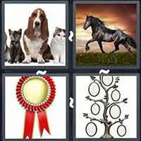 4 Pics 1 Word level 24-11 8 Letters