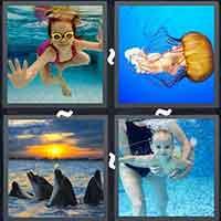 4 Pics 1 Word level 3291