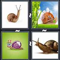 4 Pics 1 Word level 3302