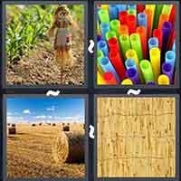 4 Pics 1 Word level 3397
