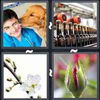 4 Pics 1 Word level 15-10 3 Letters