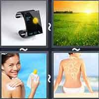 4 Pics 1 Word level 3556