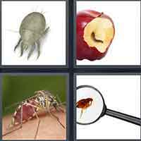 4 Pics 1 Word level 27-8 8 Letters